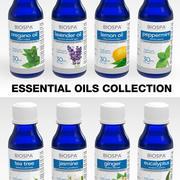 Collezione di oli essenziali 3d model