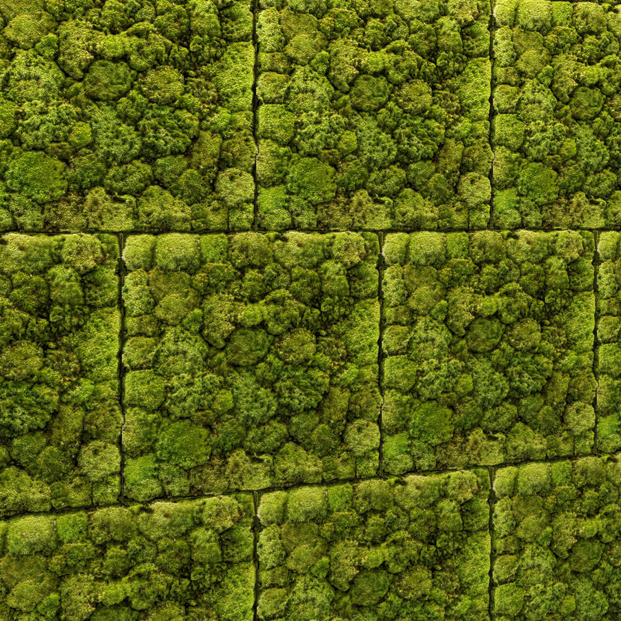 Fytowall Stone and moss royalty-free 3d model - Preview no. 3