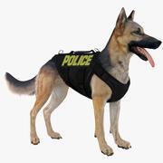 경찰 양치기 개 (블랙 & 탄) 3d model