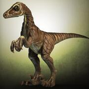 Velociraptor high poly 3d model