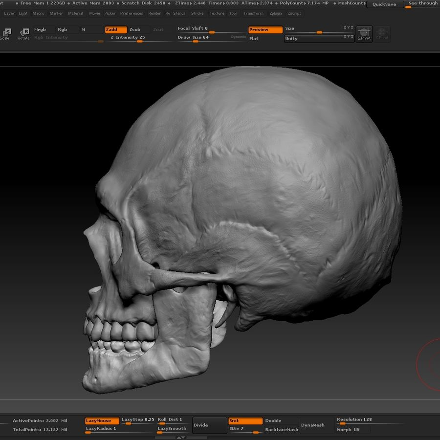 Skull advanced royalty-free 3d model - Preview no. 14