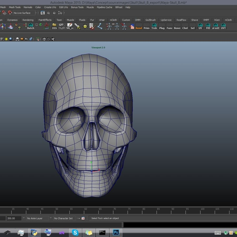 Skull advanced royalty-free 3d model - Preview no. 19