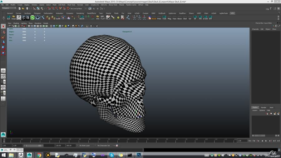 Skull advanced royalty-free 3d model - Preview no. 20