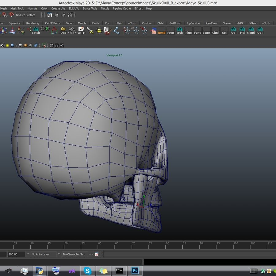 Skull advanced royalty-free 3d model - Preview no. 17