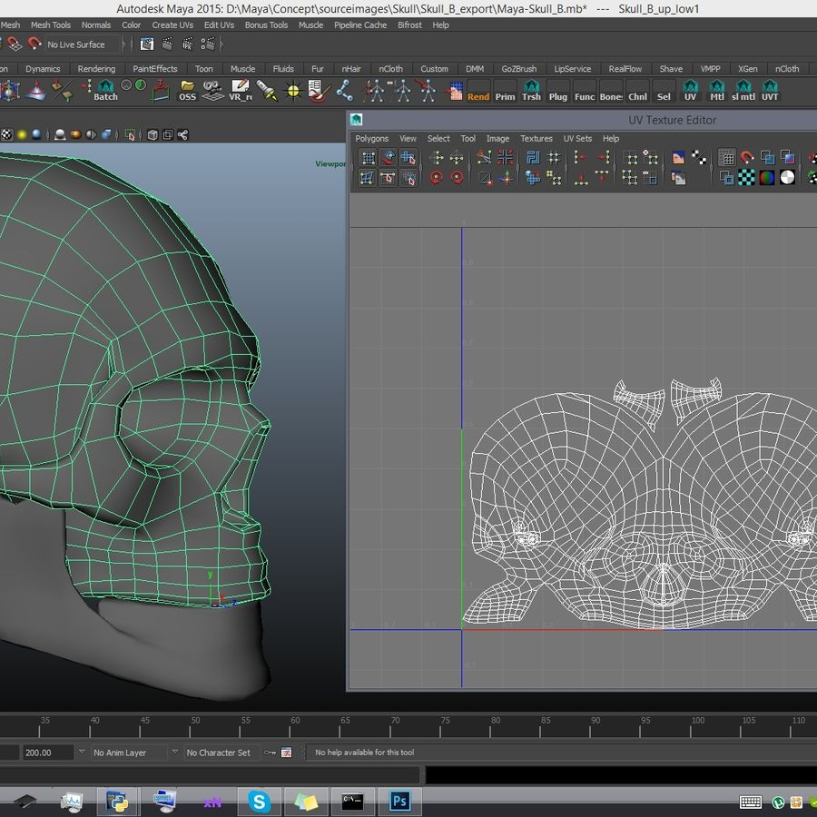 Skull advanced royalty-free 3d model - Preview no. 24