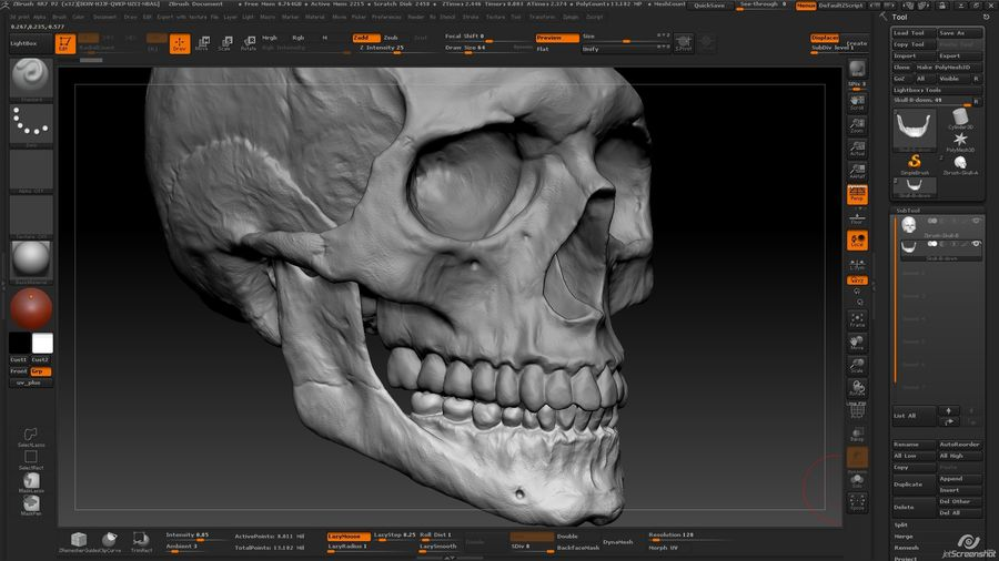 Skull advanced royalty-free 3d model - Preview no. 11