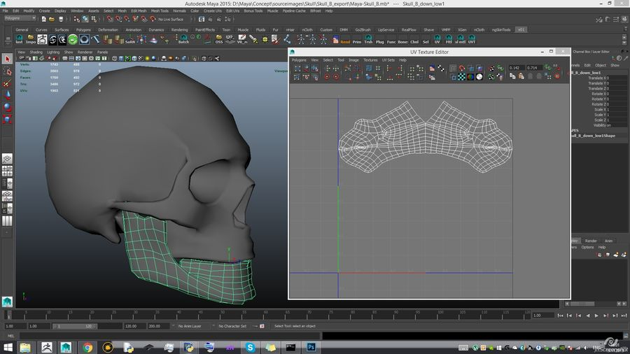 Skull advanced royalty-free 3d model - Preview no. 23