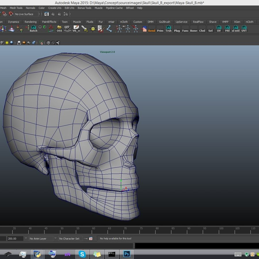 Skull advanced royalty-free 3d model - Preview no. 16