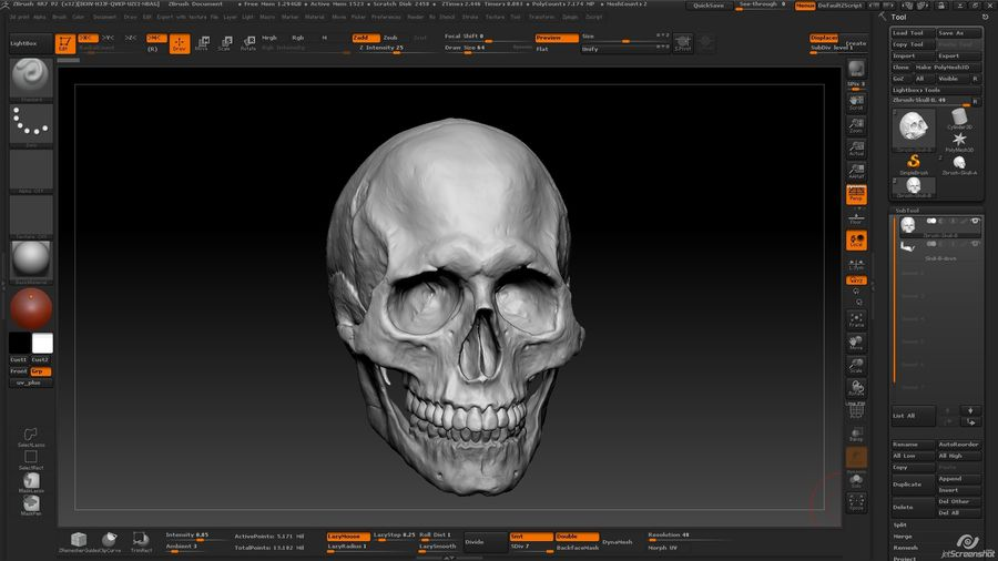 Skull advanced royalty-free 3d model - Preview no. 12
