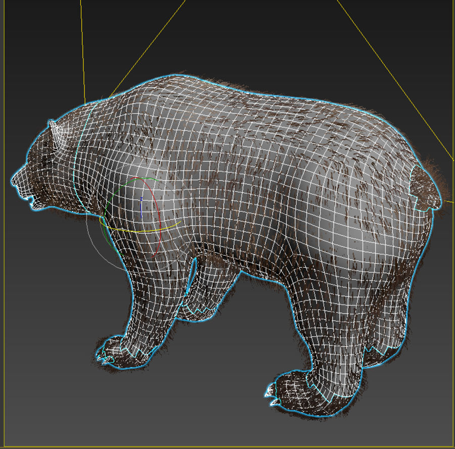 Oso grizzly royalty-free modelo 3d - Preview no. 8