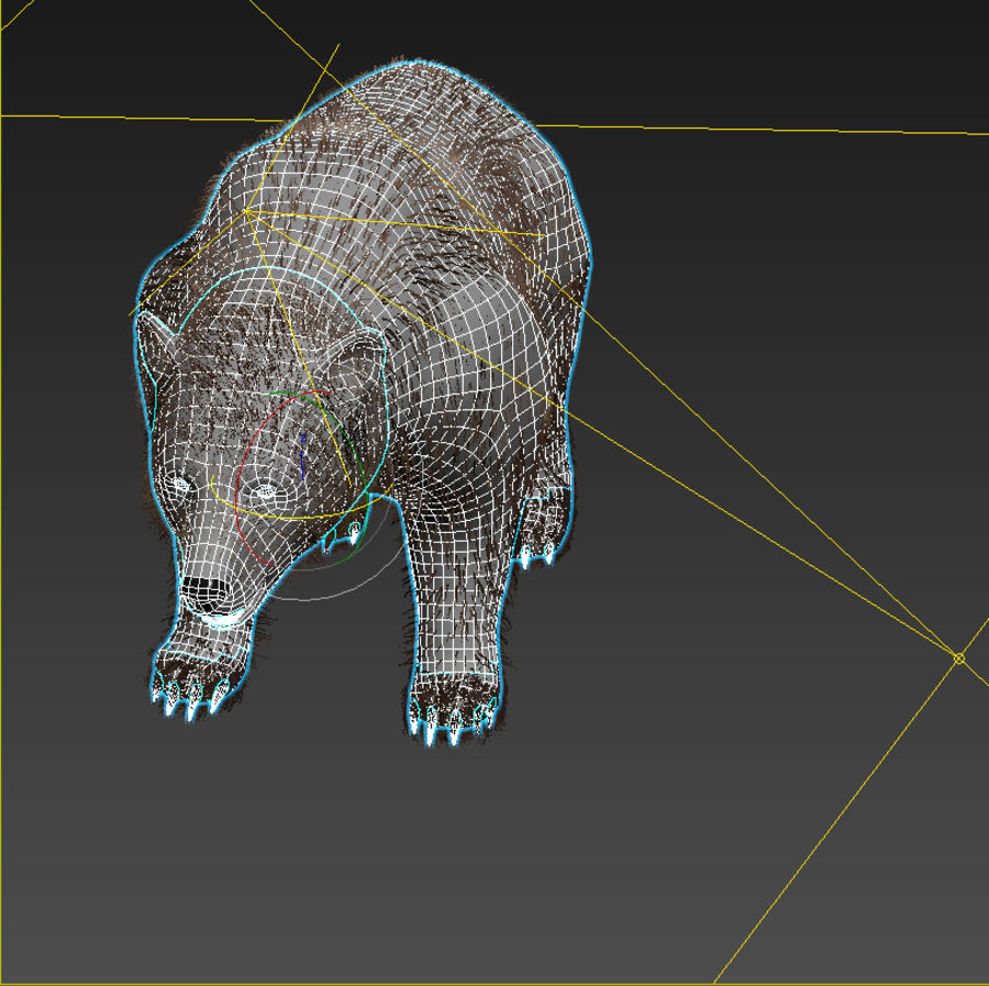 Oso grizzly royalty-free modelo 3d - Preview no. 9