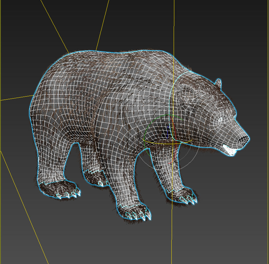 Oso grizzly royalty-free modelo 3d - Preview no. 7