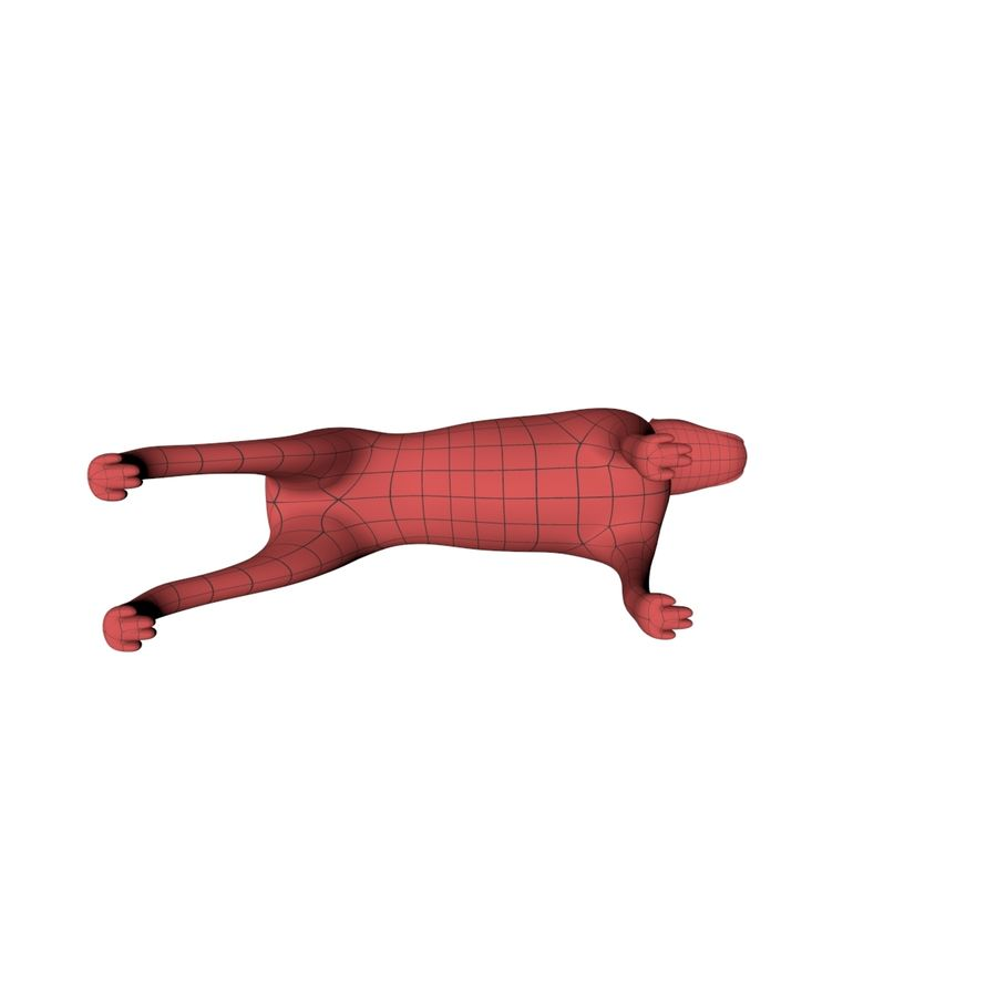 Boksör köpek taban örgü royalty-free 3d model - Preview no. 6