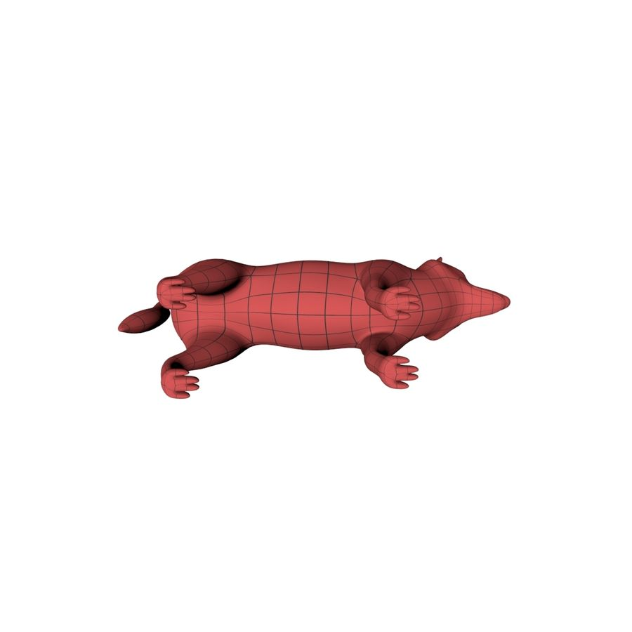 Wolf base mesh royalty-free 3d model - Preview no. 6