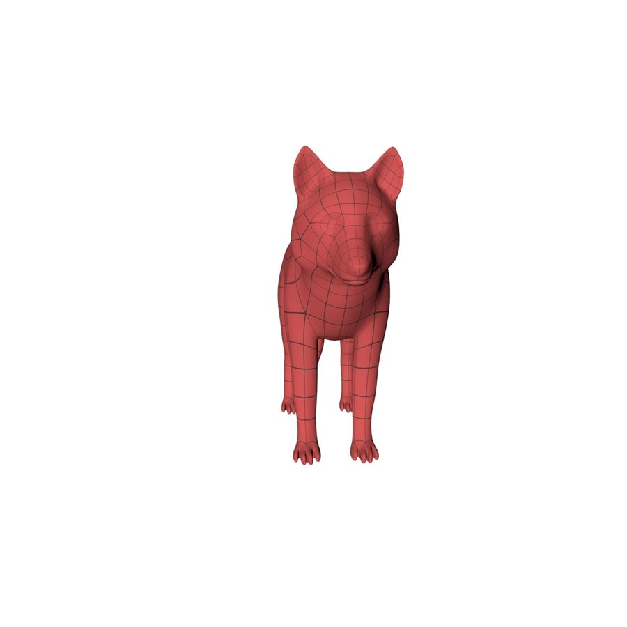 Wolf base mesh royalty-free 3d model - Preview no. 4