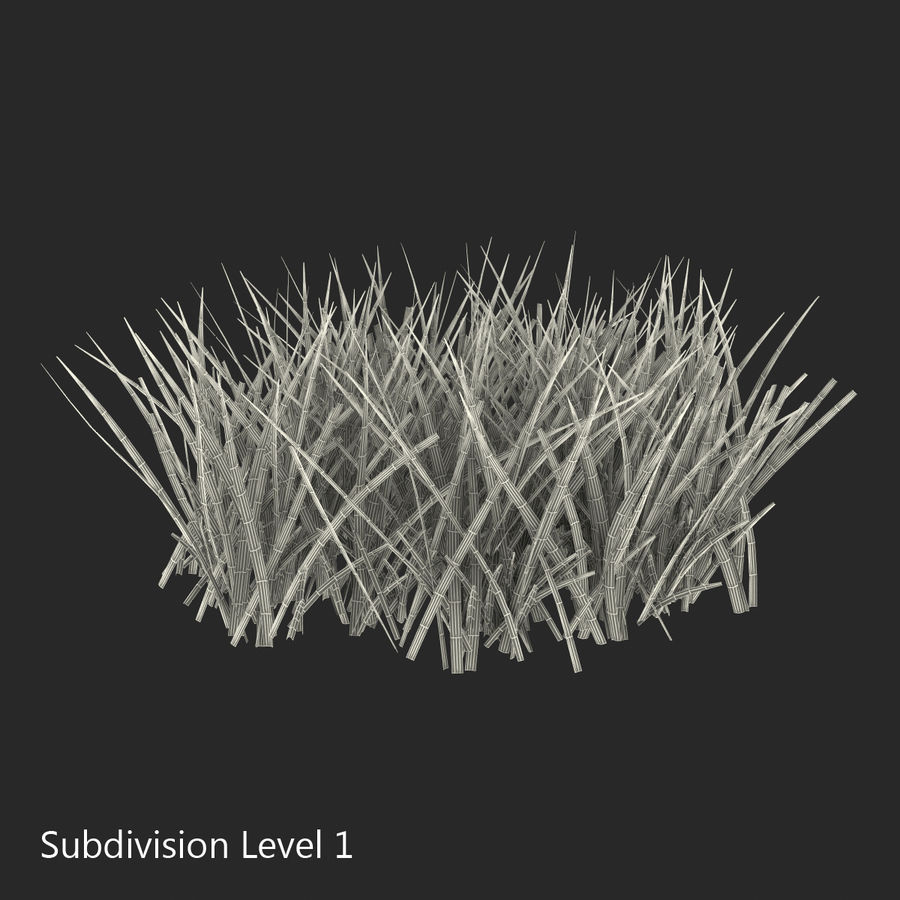 Grass 2 royalty-free 3d model - Preview no. 10