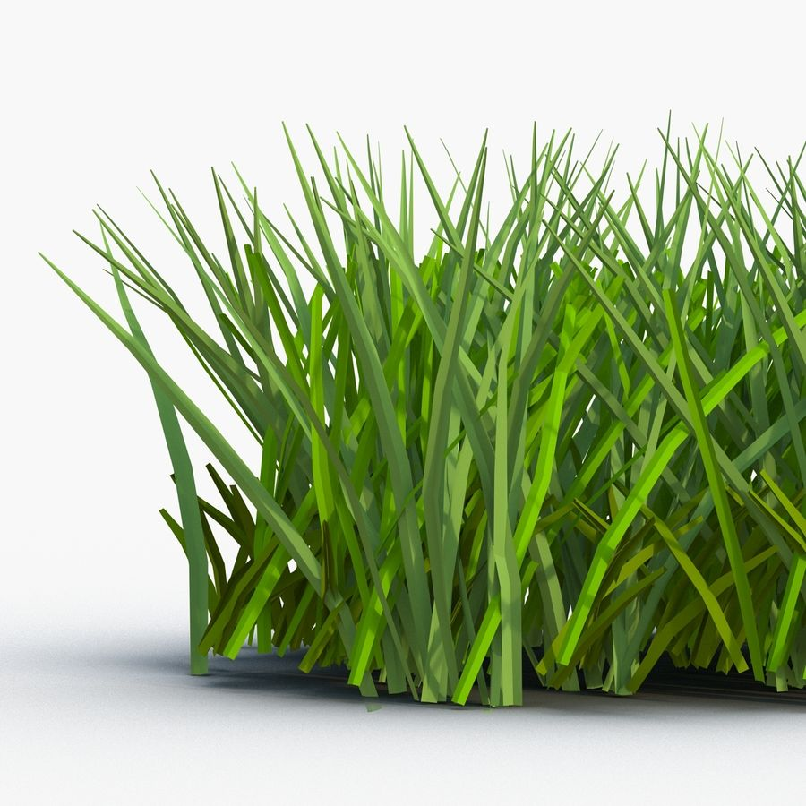 Grass 2 royalty-free 3d model - Preview no. 6