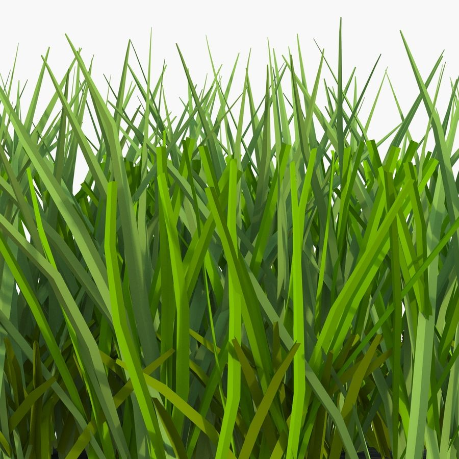 Grass 2 royalty-free 3d model - Preview no. 8