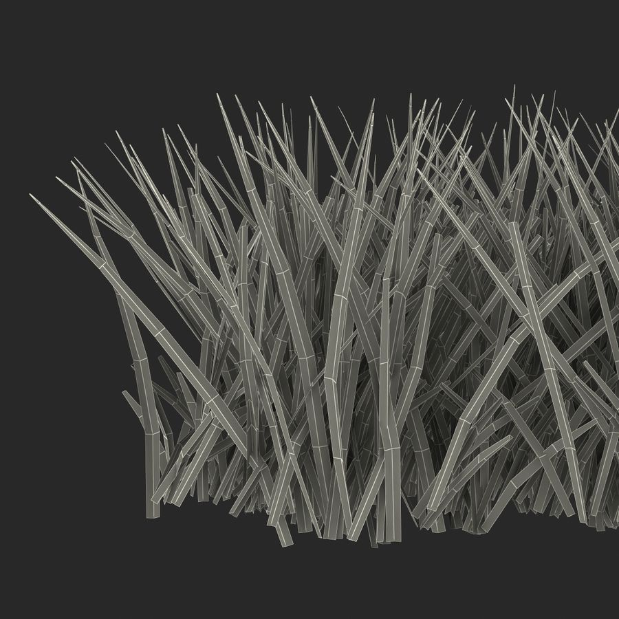 Grass 2 royalty-free 3d model - Preview no. 15