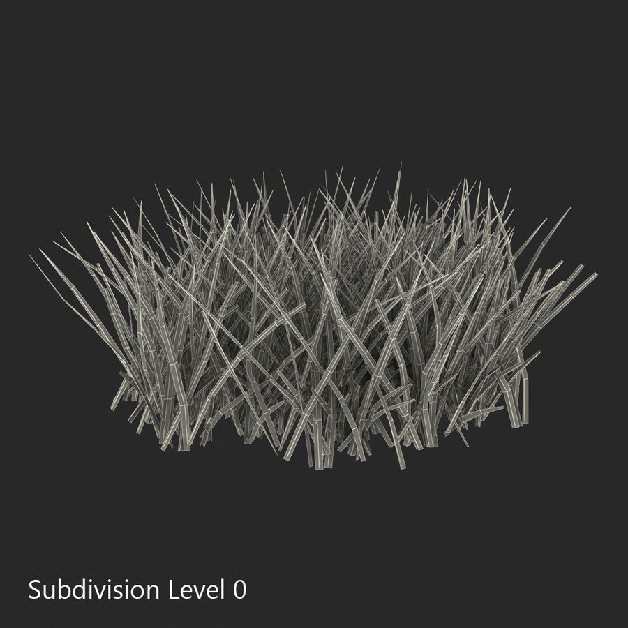 Grass 2 royalty-free 3d model - Preview no. 9