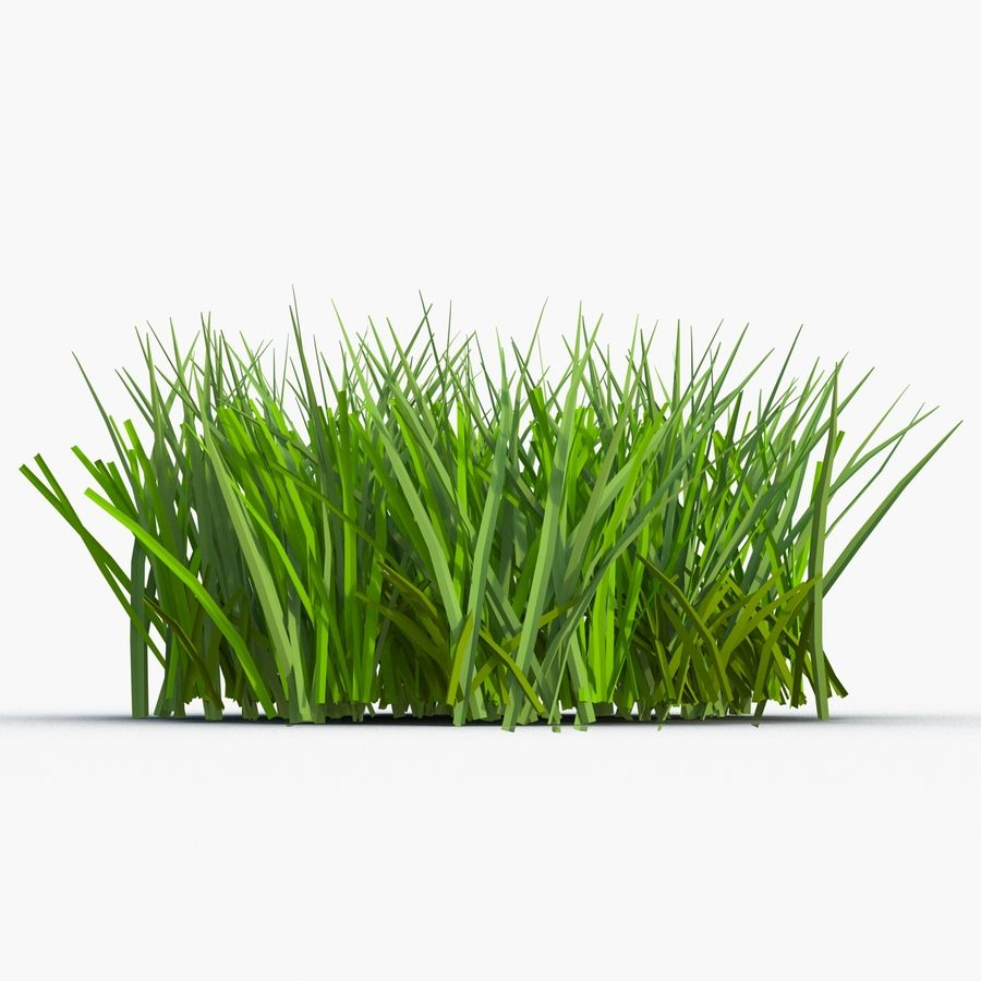 Grass 2 royalty-free 3d model - Preview no. 5