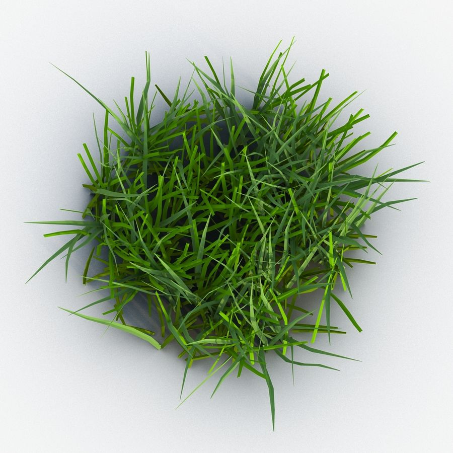 Grass 2 royalty-free 3d model - Preview no. 4