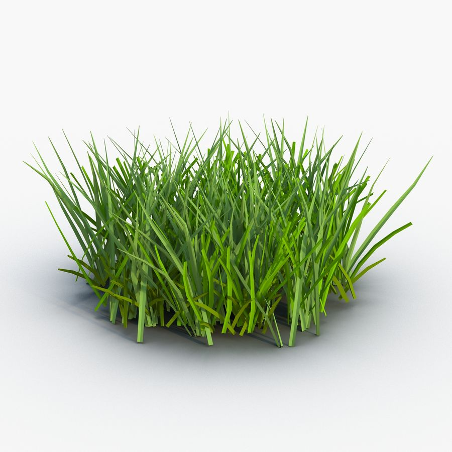 Grass 2 royalty-free 3d model - Preview no. 2