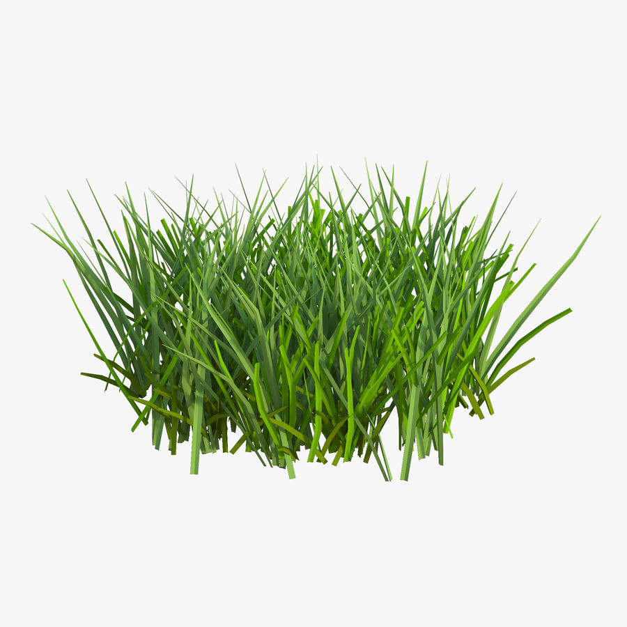 Grass 2 royalty-free 3d model - Preview no. 1