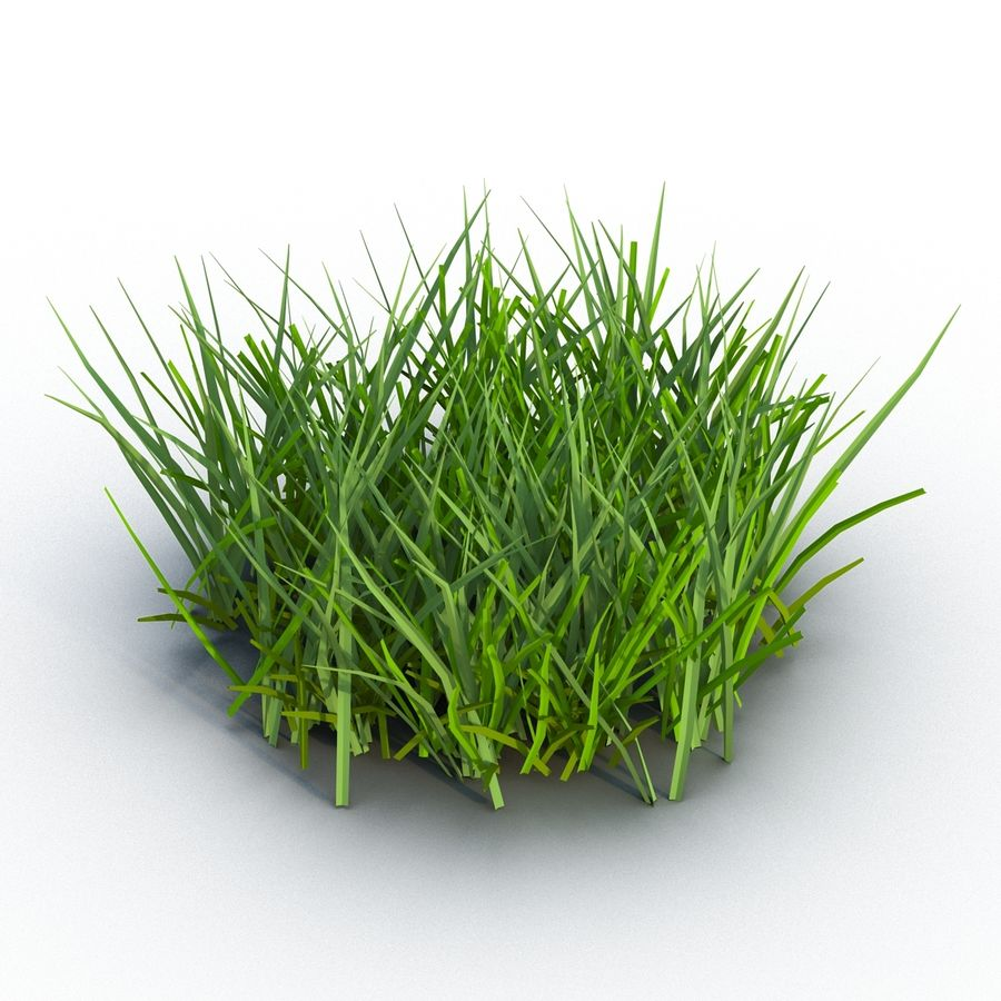 Grass 2 royalty-free 3d model - Preview no. 3