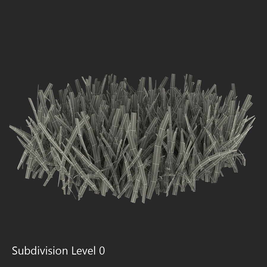 Grass 5 royalty-free 3d model - Preview no. 9