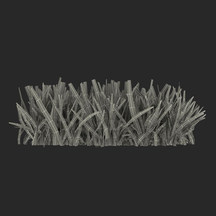 Grass 5 royalty-free 3d model - Preview no. 15