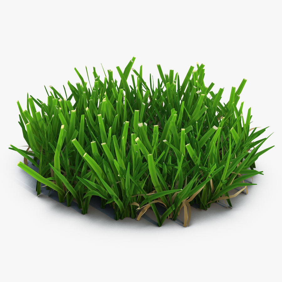 Grass 5 royalty-free 3d model - Preview no. 1