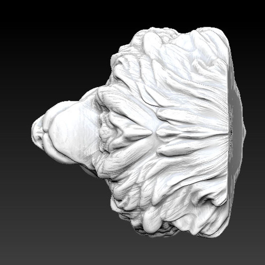 Lion head high royalty-free 3d model - Preview no. 4