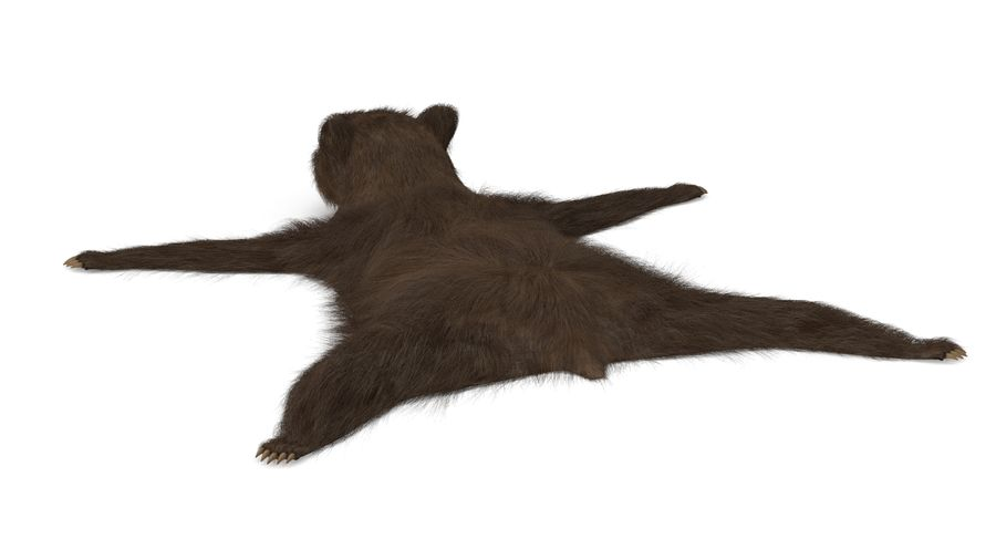 bear fur royalty-free 3d model - Preview no. 5