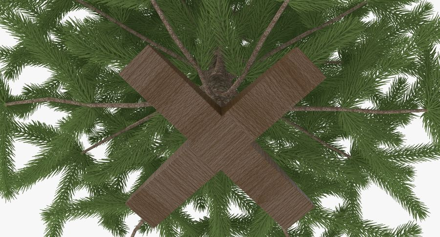 Fir Tree royalty-free 3d model - Preview no. 9