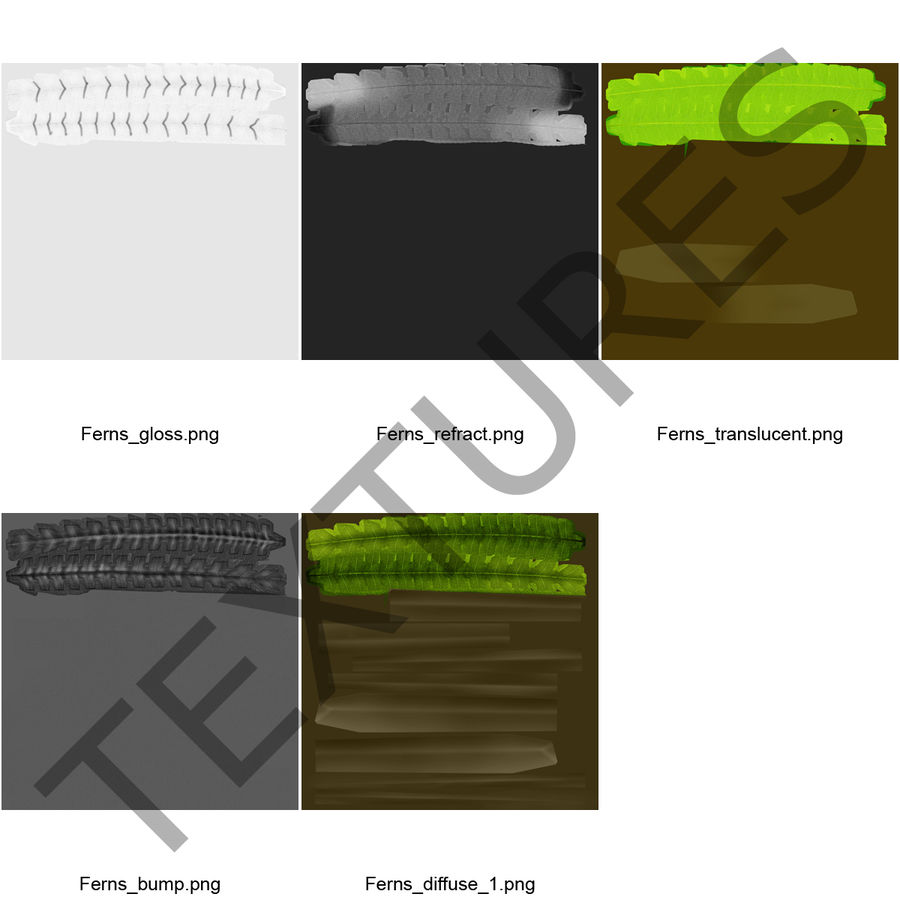 Fern royalty-free 3d model - Preview no. 12