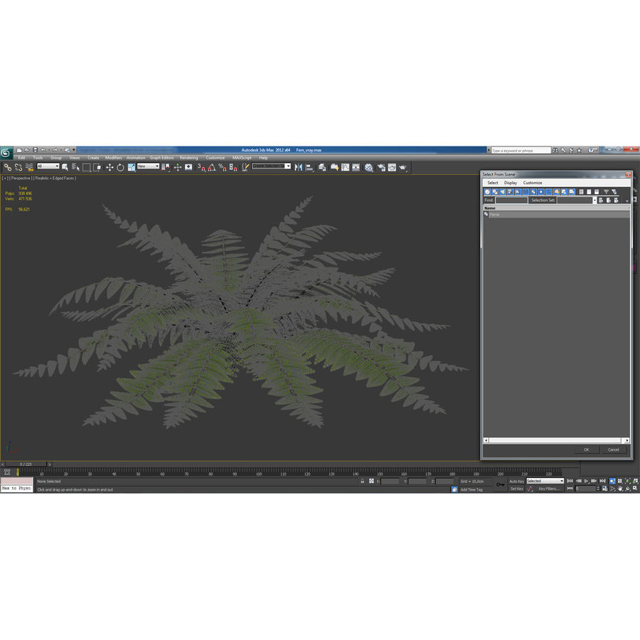 Fern royalty-free 3d model - Preview no. 13