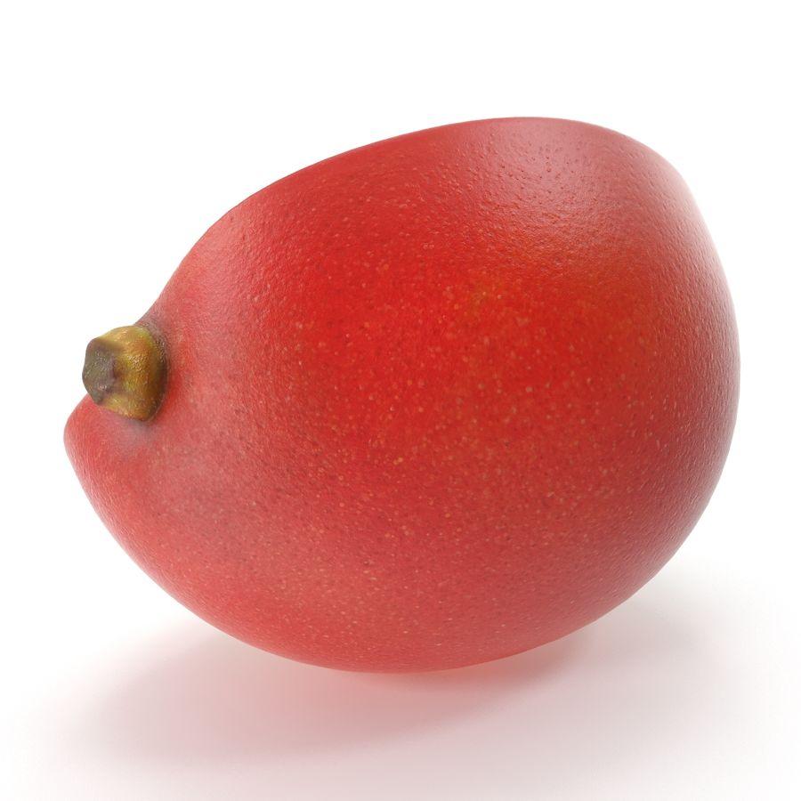 Mango royalty-free 3d model - Preview no. 15