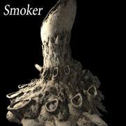 Fumante 3d model