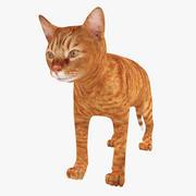 Gato vermelho 3d model