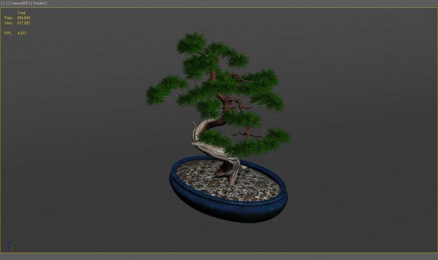 盆栽 royalty-free 3d model - Preview no. 8