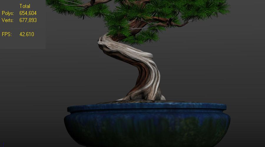 盆栽 royalty-free 3d model - Preview no. 4