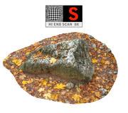 Las skalny jesienią 8K (2) 3d model