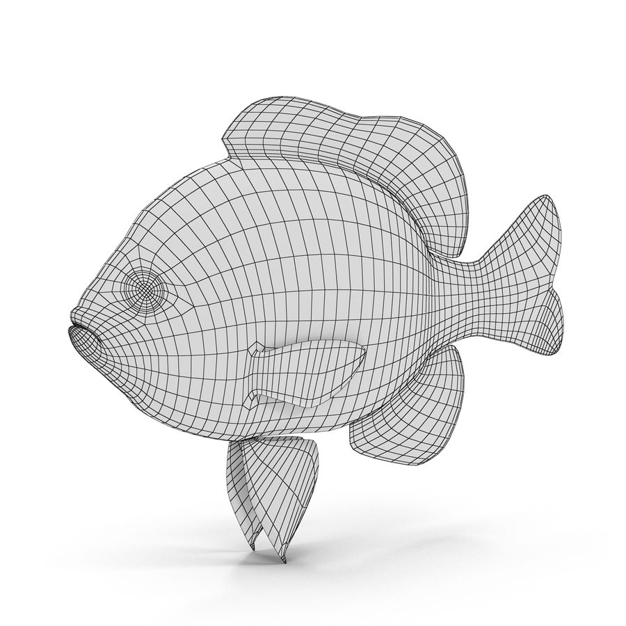 Longear Sunfish royalty-free 3d model - Preview no. 9