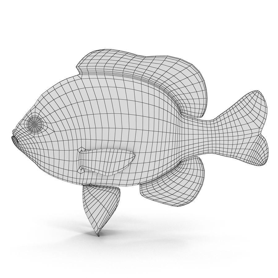 Longear Sunfish royalty-free 3d model - Preview no. 8