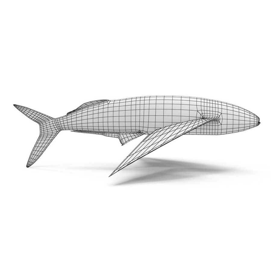 Flying Fish royalty-free 3d model - Preview no. 10