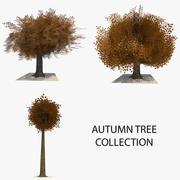 Coleção de 3 árvores de outono 3d model