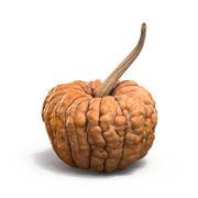 Gnarled Pumpkin 3d model