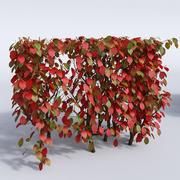 Осенние кусты установлены 3d model