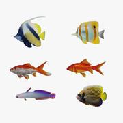 물고기 수집 3d model